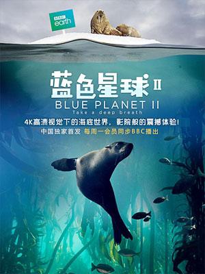 蓝色星球2/蓝色星球 第二季